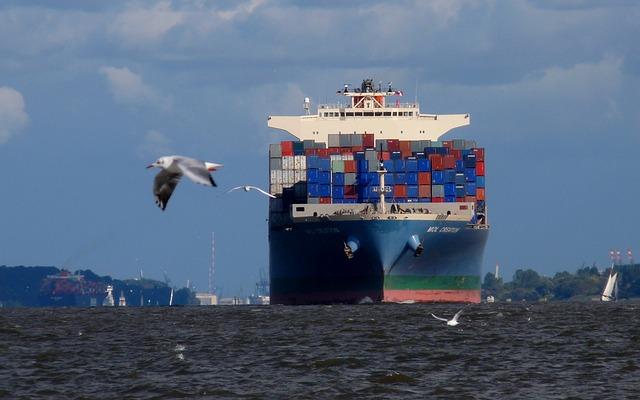 container-bird.jpg